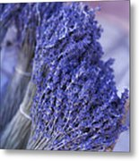 Lavender Bunches In Provence Metal Print by Paul Grand