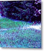 Lawn Blue Metal Print