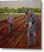 Laying Off Rows Metal Print