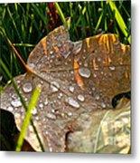 Leaf Beads Metal Print