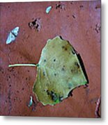 Leaf Libretto Metal Print