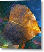 Leaf Portrait 5 Metal Print
