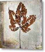 Leaf  With Textured Effect Metal Print