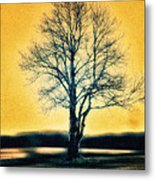 Leafless Tree Metal Print
