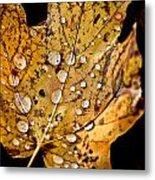 Leafwash Metal Print