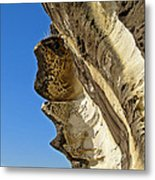 Leaning Rock Metal Print by Kaye Menner