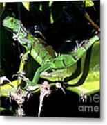 Leapin Lizards Metal Print by Karen Wiles