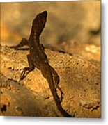 Leapin' Lizards Metal Print