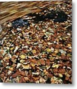 Leaves Floating On River Water Metal Print