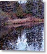 Leaves On Water Metal Print