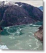 Leconte Glacier Metal Print by Mike Reid
