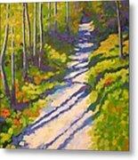 Lena Lake Trail 3 Metal Print