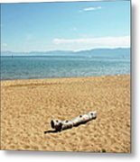 Let Sleeping Logs Lie Metal Print
