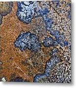 Lichen Pattern Series - 35 Metal Print