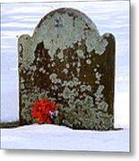 Lichen Tombstone Metal Print