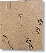 Footprints Mans Best Friend Metal Print