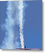 Life's The Pitts Metal Print by Kris Dutson