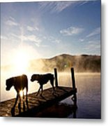 Light Of My Life Boxer Dogs On Dock Metal Print