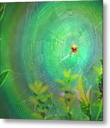 Lightning Spider Metal Print