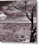 Lightning Striking Tree Of The Grand Canyon Metal Print
