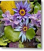Lilies No. 12 Metal Print