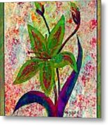 Lily Abstraction Metal Print