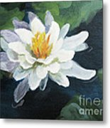 Lily In Water 2 Metal Print