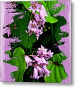 Lily Of The Valley - In The Pink #1 Metal Print