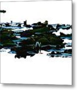 Lily Pads On White Water Metal Print