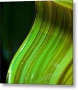 Lime Curl Ll Metal Print by Dana Kern