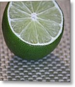 Lime Light Metal Print by Terri Thompson