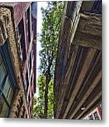 Lines And Trees Metal Print