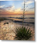 Linger By The Sea Metal Print