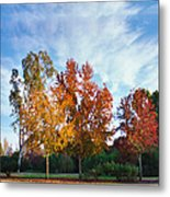 Liquid Amber Trees Metal Print