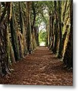 Lismore, County Waterford, Ireland Metal Print
