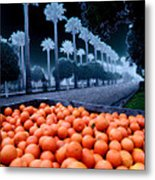 Litchfield Park Metal Print