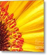 Little Bit Of Sunshine Metal Print