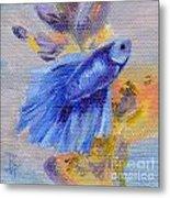 Little Blue Betta Fish Metal Print