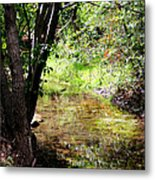 Little Creek Metal Print