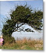 Little Girl And Wind-blown Tree Metal Print