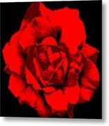 Little Red Flower ... Metal Print