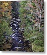 Little River - North Carolina Autumn Scene Metal Print