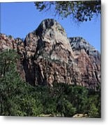Little Virgin River - Zion National Park Metal Print
