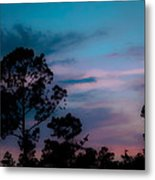 Loblelly Pine Silhouette Metal Print by DigiArt Diaries by Vicky B Fuller
