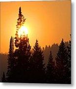Lodgepole Sundown Metal Print