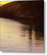 Lone Bird At Rosario Beach Point Metal Print by Randall Thomas Stone