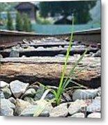 Lone Blade Of Grass On Railtracks Metal Print