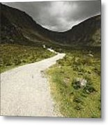 Lone Person Walking On A Path Leading Metal Print