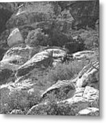 Lone Ram At Red Rock Canyon Metal Print