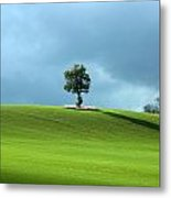 Lone Tree Sintinel Metal Print